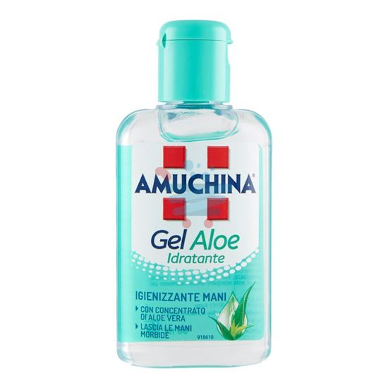AMUCHINA GEL MANI ALOE 80ML